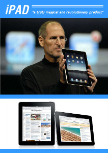 Business News iPad