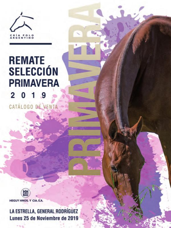 Catálogos 2019 AACCP RematePrimaveraAACCP19