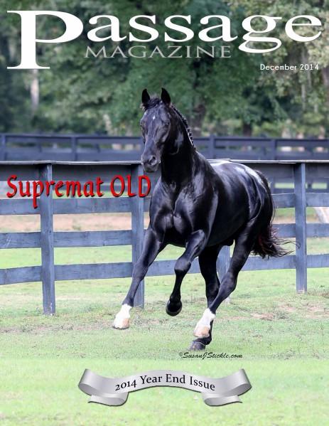 Passage Magazine December 2014