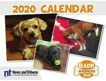 Bark Madness Calendar