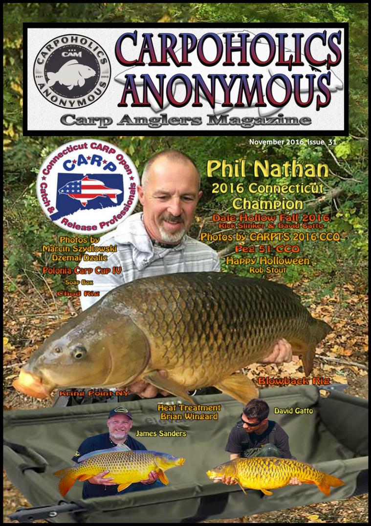 Issue 31, November 2016