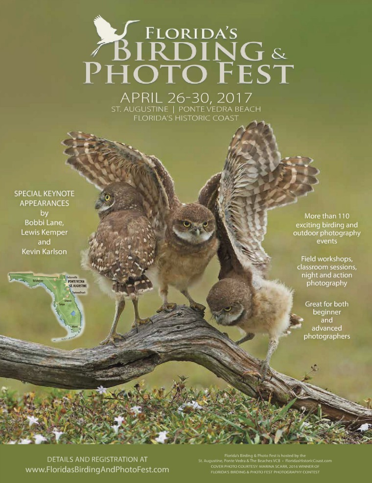 Florida's Birding & Photo Fest official guide 2017
