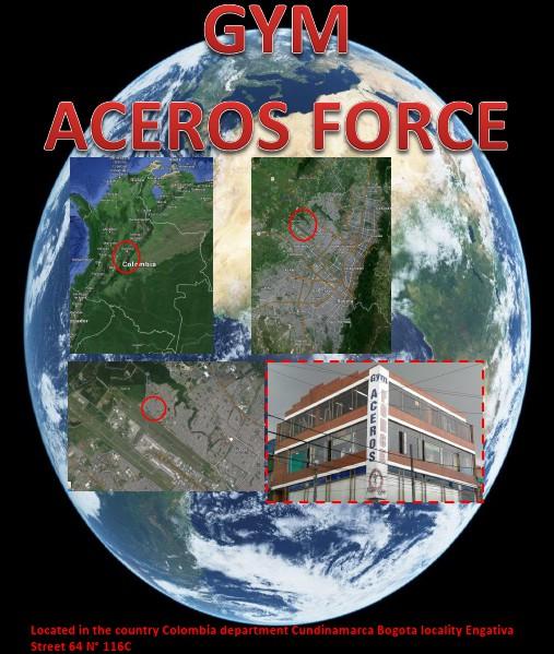 Gym Aceros Force js