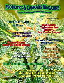 Probiotics & Cannabis Magazine