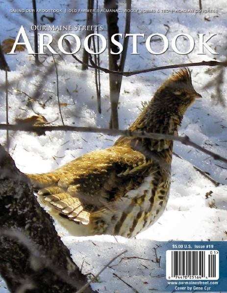 Issue 19 : Winter 2014