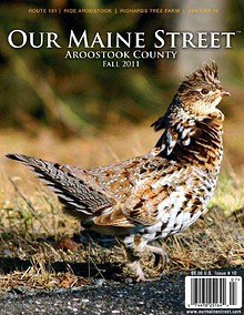 Our Maine Street's Aroostook