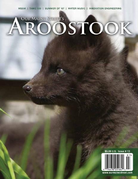 Issue 13 : Summer 2012