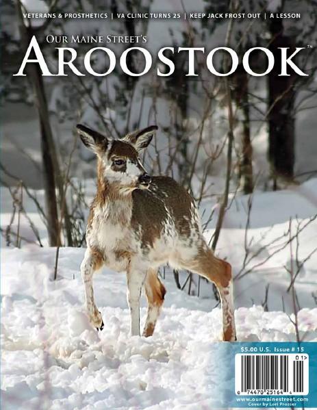 Issue 15 : Winter 2013