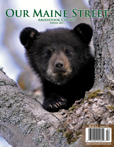 Issue 8 : Spring 2011