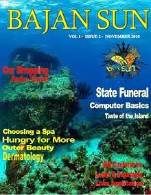 Bajan Sun Magazine - Caribbean Entrepreneurs