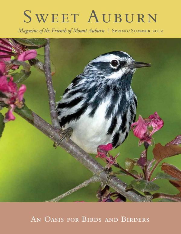 An Oasis for Birds and Birders