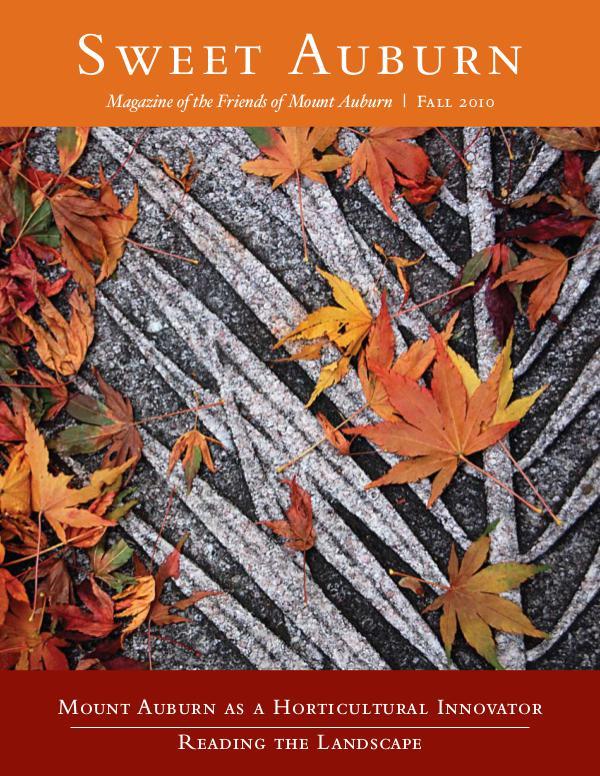 Mount Auburn as a Horticultural Innovator
