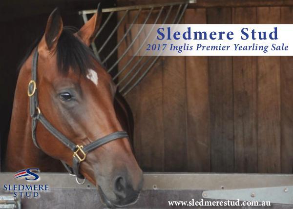 Sledmere Stud - 2017 Inglis Premier Yearling Sale draft 1