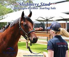 Sledmere Stud - 2018 Inglis Premier Yearling Sale draft