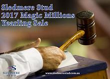 Sledmere Stud 2017 Magic Millions Yearling Sale