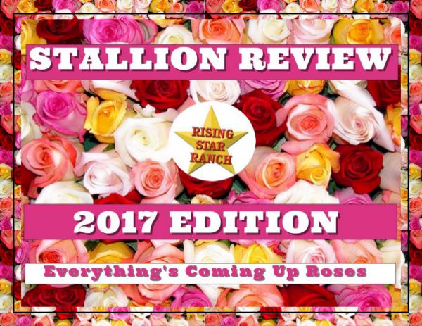 2017 Stallion Review 1