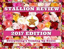 2017 Stallion Review