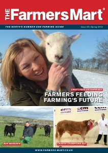 Spring 2013 - Issue 26