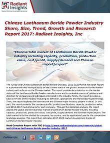 Chinese Lanthanum Boride Powder Industry Share, Size, Trend, 2017
