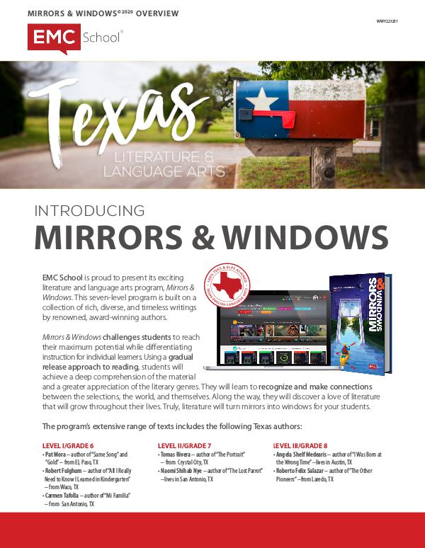 MIRRORS & WINDOWS OVERVIEW