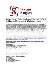 Sodium Bisulfate Market Size, Share, Cost and Price, Analysis 2016