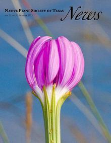 NPSOT News Summer 2013