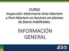 Curso Inspección Veterinaria Ante Mortem y Post mortem