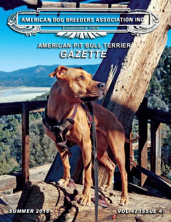 American Pit Bull Terrier Gazette Vol42 I4