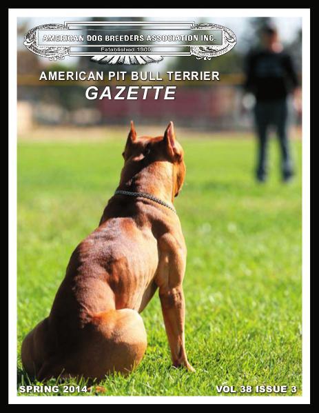 American Pit Bull Terrier Gazette Volume 38 Issue 3