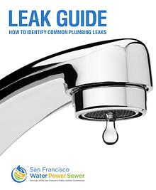 Leak Guide
