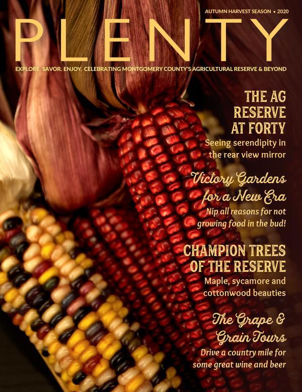 PLENTY magazine   FALL/WINTER 2020