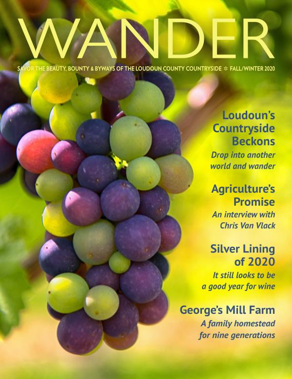 WANDER magazine  FALL/WINTER 2020