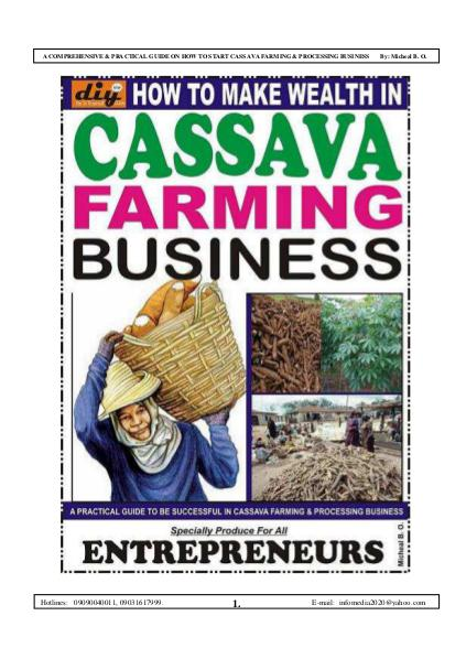 HOW TO MAKE WEALTH IN CASSAVA FARMING BUSINESS HOW TO MAKE WEALTH IN CASSAVA FARMING BUSINESS