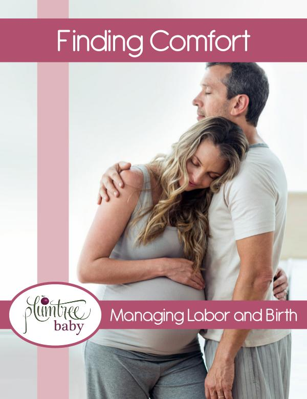 Plumtree Baby Digital Books for Childbirth Education Finding Comfort