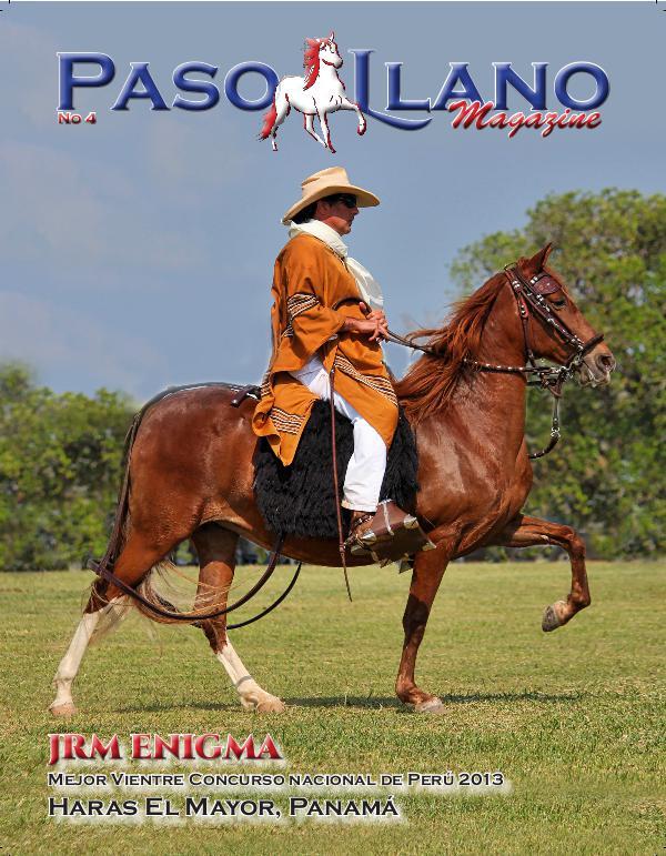 Paso Llano Magazine #4