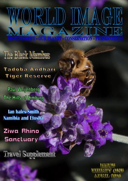 World Image Magazine Issue 31 April 2016