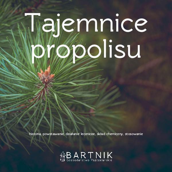 Tajemnice propolisu Kompendium wiedzy o propolisie