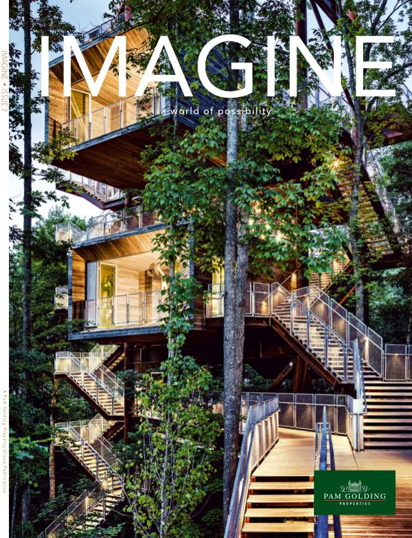 Imagine Issue 7