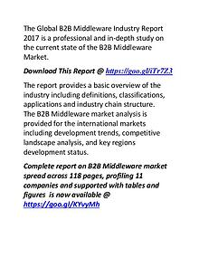 B2B Middleware Industry Report 2017: Compatitive Landscape Analysis