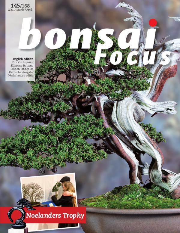 BONSAI FOCUS - English 2017-2