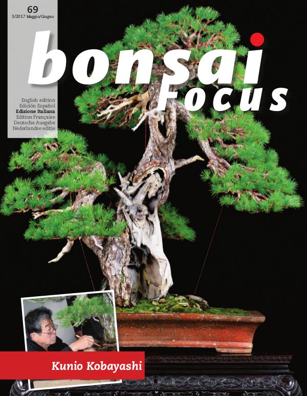 BONSAI FOCUS - Italiano 2017-3