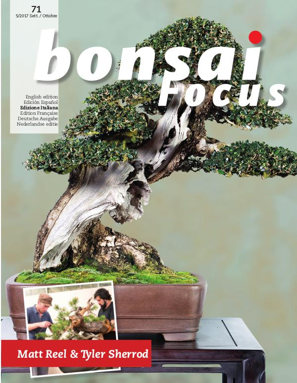 BONSAI FOCUS - Italiano 2017-5