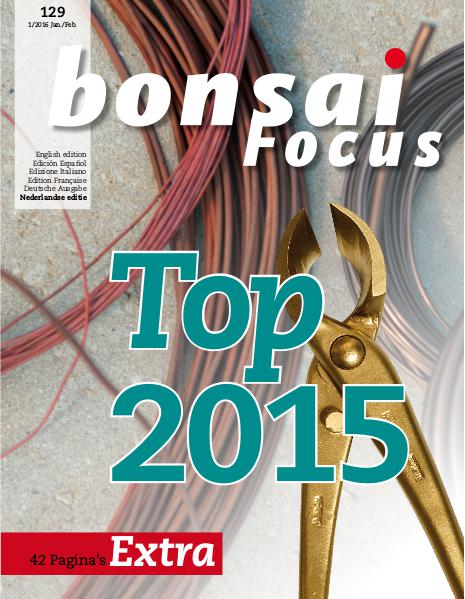 BONSAI FOCUS - Nederlands 2016-1