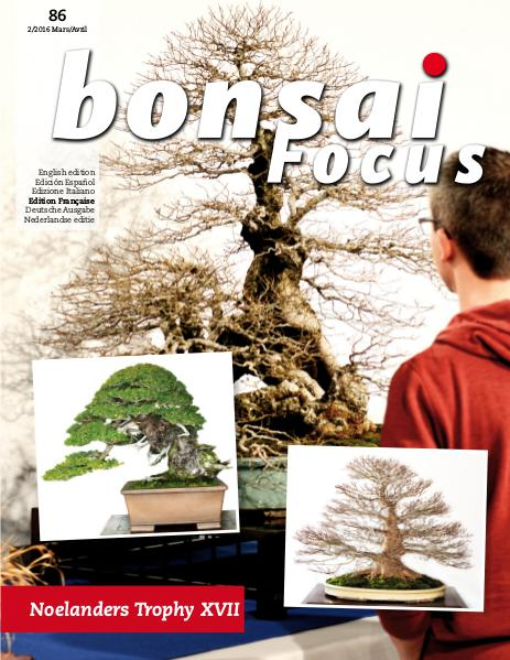 BONSAI FOCUS - Français 2016-2