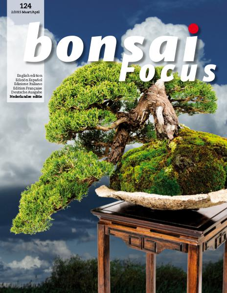 BONSAI FOCUS - Nederlands 2015-2