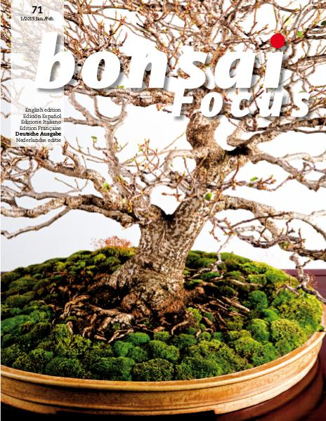 BONSAI FOCUS - Deutsch 2015-1