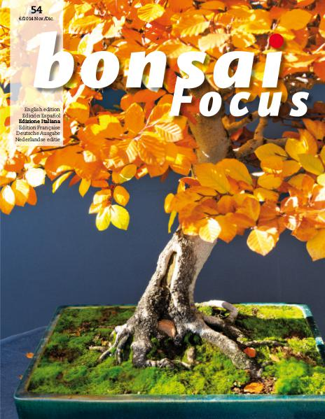 BONSAI FOCUS - Italiano 2014-6