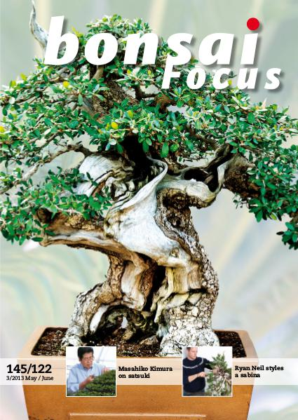 BONSAI FOCUS - English 2013-3