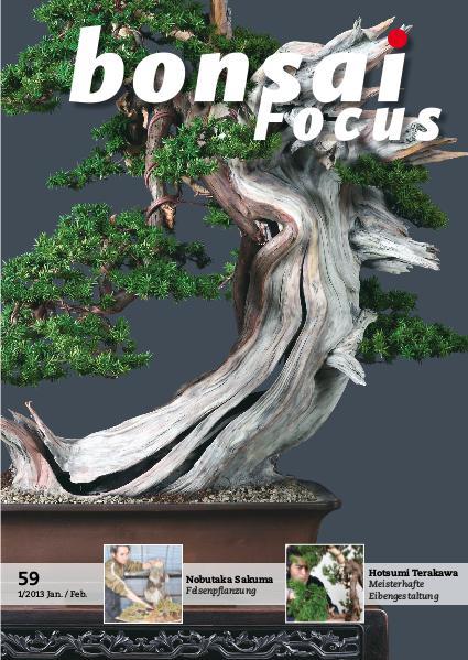 BONSAI FOCUS - Deutsch 2013-1