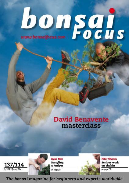 BONSAI FOCUS - English 2012-1